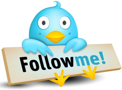 Twitter Follow Me Button